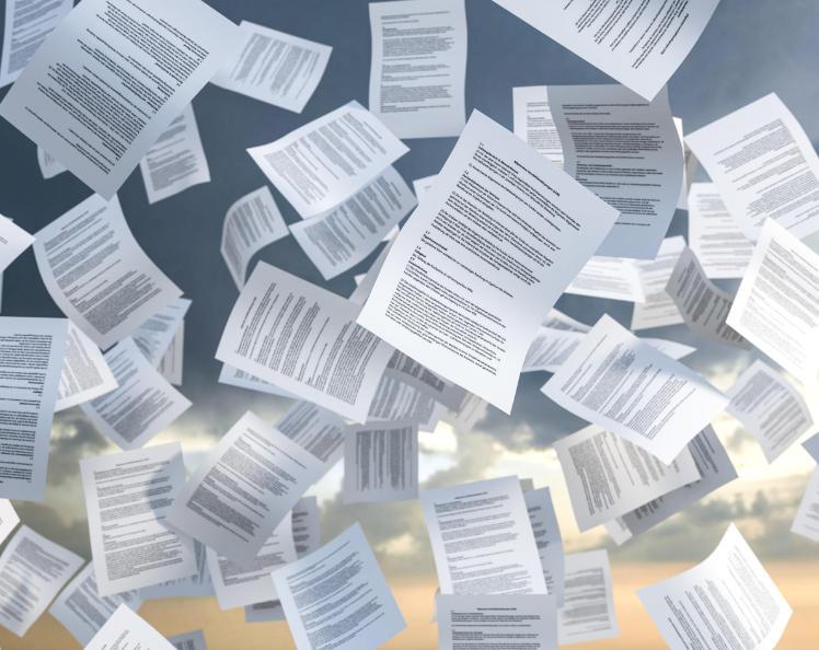 Kundenstimmen Organisationsentiwcklung Schönfeld Unternehmensberatung